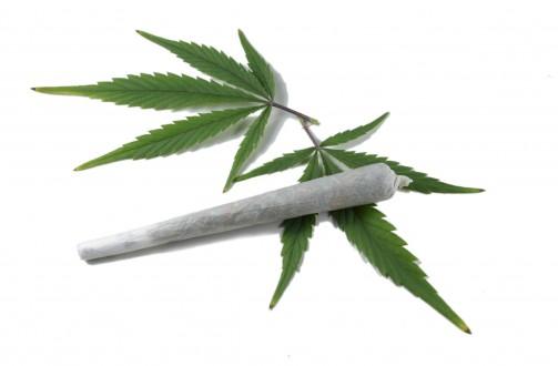Μαριχουάνα βουρ…