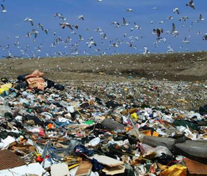 Στη μάχη των σκουπιδιών