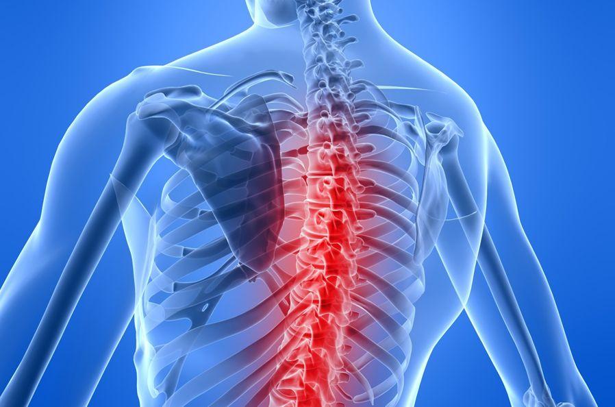 Επιτυχημένη η δοκιμή φαρμάκου για τραύματα στη σπονδυλική στήλη