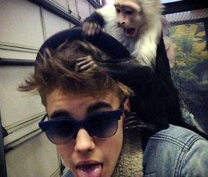 Σε γερμανικό ζωολογικό κήπο ο πίθηκος του Τζάστιν Μπίμπερ
