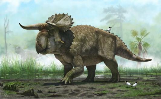 Ανακαλύφθηκε νέο είδος δεινοσαύρου