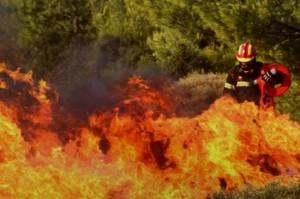 Μαγιόρκα: Εκατοντάδες πυροσβέστες στο μέτωπο της πυρκαγιάς