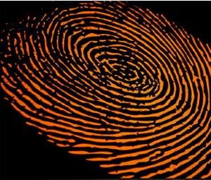 Επιχείρηση κατά της εγκληματικότητας σε Λουτράκι και Αγίους Θεοδώρους