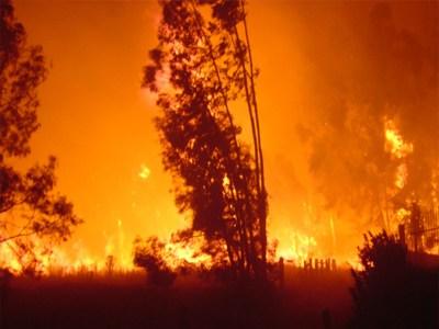 Σκληρή μάχη με τις θανατηφόρες φλόγες στην Πορτογαλία