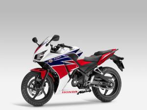 HONDACBR300R Supersport 2014 023