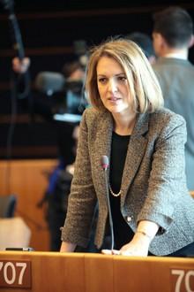 H Mαριλένα Kοππά στην Επιτροπή Άμυνας της Γαλλικής Εθνοσυνέλευσης