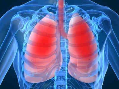 Έφτιαξαν πνεύμονες από βλαστοκύτταρα
