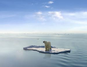 Τα πετρέλαια της Αρκτικής απειλούν τις πολικές αρκούδες