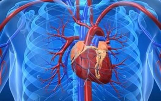 Επιτυχής η πρώτη εμφύτευση τεχνητής καρδιάς