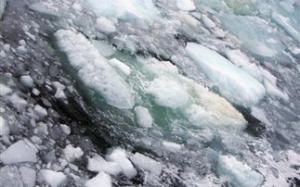 Πόσο κρύο μπορεί να αντέξει το ανθρώπινο σώμα (Βίντεο)