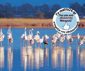 Ελληνική Ορνιθολογική Εταιρεία -Προστασία σπάνιων πουλιών και βιοτόπων