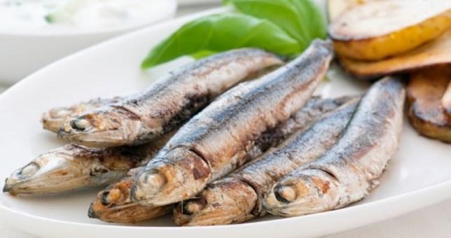Τρώμε ψάρια με ίνες πλαστικού