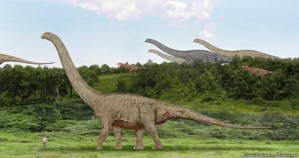 Argentinosaurus zs f
