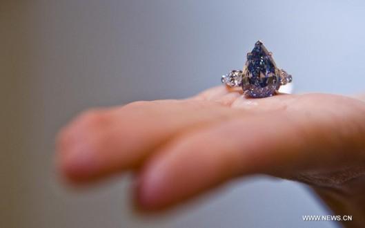 Ο αγοραστής είναι το αμερικάνικο κοσμηματοπωλείο Harry Winston αλλά ο  πωλητής του παραμένει άγνωστος. Το διαμάντι θα ονομάζεται «Winston έντονο  μπλε» 685302dff05