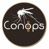 conop
