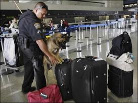 airportpolice