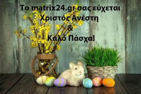 13096142_997843753603567_735729646397151204_n