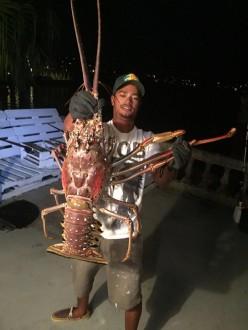________________lobster