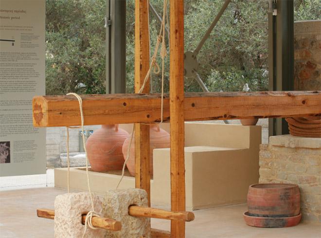 Μουσείο Ελιάς και Ελληνικού Λαδιού, Σπάρτη