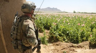 afganistanstratiotis