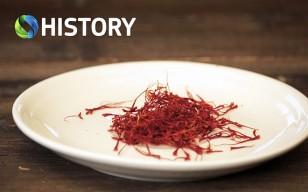 COSMOTE-HISTORY_Οδύσσεια-Μαγειρικής