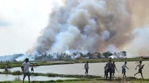 mianmarr