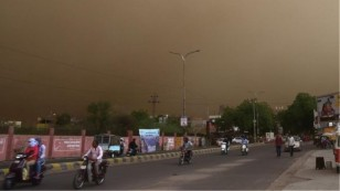 sundstorm-india-dead