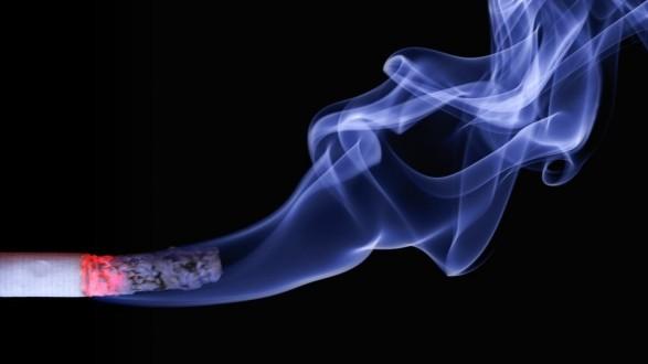 ash-burning-cigar-70088