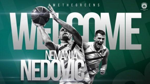 Παναθηναϊκός: «Πράσινος» ο Νέντοβιτς