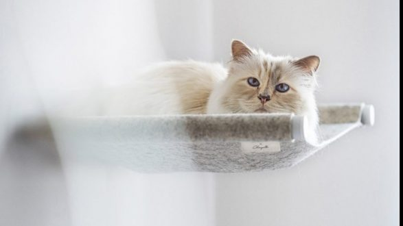 Η γάτα του Καρλ Λάγκερφελντ στο ντιζάιν επίπλων για κατοικίδια
