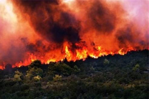 Υπό μερικό έλεγχο η φωτιά στη Σάμο