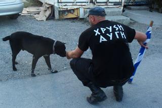 Χρυσαυγίτες έσπασαν μπλόκα της ΕΛ.ΑΣ. με σκυλιά